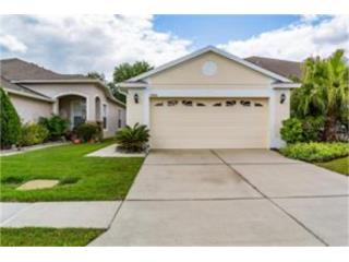 Meadow Pointe cerca Tampa