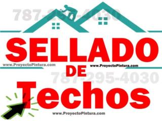 SELLADO DE TECHOS EN PUERTO RICO Puerto Rico PROFESSIONAL PAINTING SOLUTION